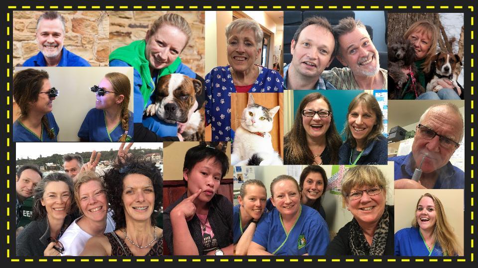 Healthy Pets Veterinary Clinic - Veterinary Clinic in